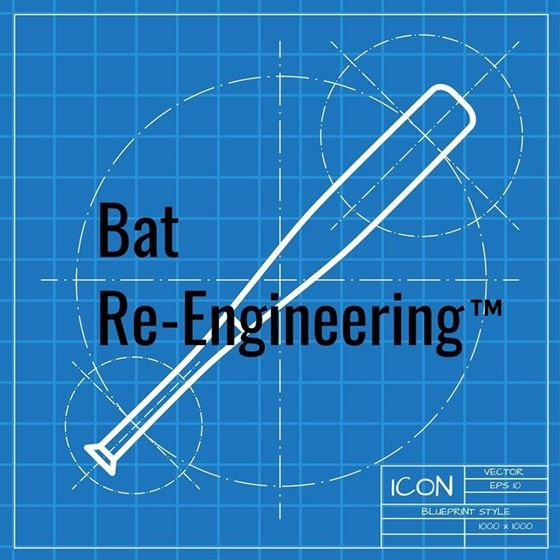 Bat Re-engineering Services
